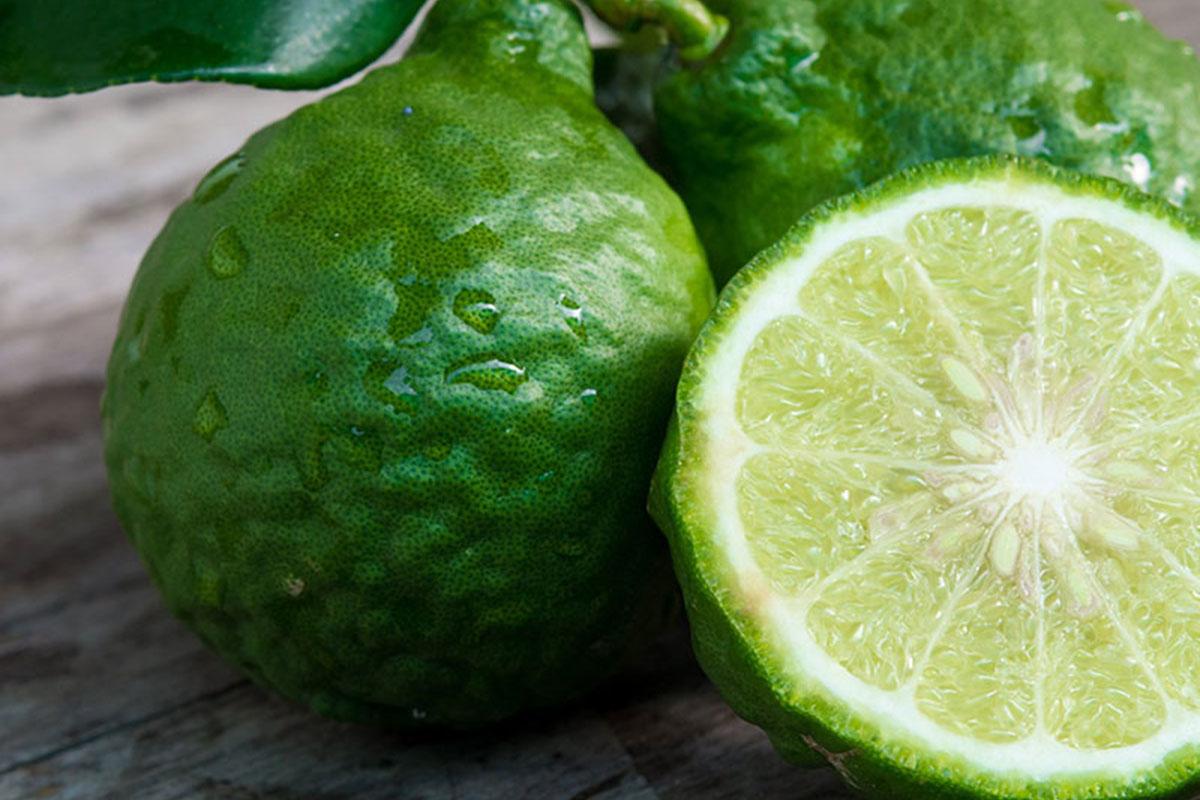 Extrato de bergamota e colesterol: conheça os efeitos
